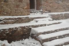 nevada012