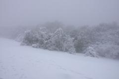 nevada018